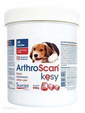 Scanvet arthroscan kęsy 480g/60 szt
