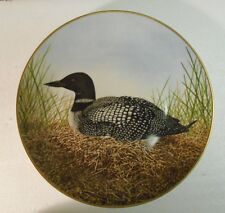 Collector Water Bird Plate Eric Tenney Great Norther Diver Porcelain 24k Gold