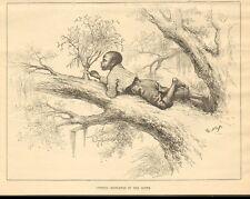 Th. Nast, Cutting Mistletoe In The South, Black Child, 1884 Antique Art Print,