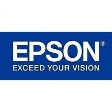 Epson S041387