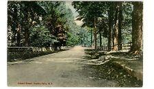 Croton Falls Ny - School Street - Handcolored Postcard