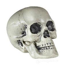 Teschio Finto Plastica Halloween Art.01379 Widmann