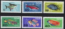 ALEMANIA/RDA EAST GERMANY 1966 MNH SC.865/70 Tropical fish