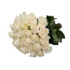24 Farm Fresh White Roses Gift