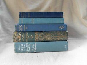 LOT OLD BOOKS PROPS SHELF DISPLAY DECOR SHADES BLUE POETRY SHERLOCK FICTION (5)