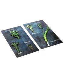 Steinbach Herdabdeckplatten | 2er-Set aus Glas | je 52 x 30 cm | Motiv Kräuter