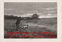 Dog Springer Spaniel Hunting Hunter Firearms Good Shot Large 1890s Antique Print