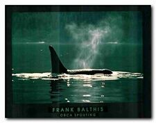 Orca Whale Ocean Frank Balthis Animal Nature Wall Decor Art Print Poster (22x28)