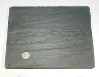 Large New NATURAL Flat SLATE Rock Piece for AQUARIUM Fish Tank or Reptiles