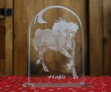 Fotogravur Pferd Acrylglas Aufsteller Gravur +Text nach Wunsch Reiten