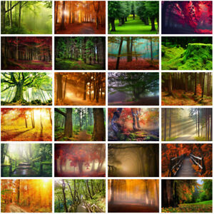 Forest Scenery Trees Backdrop Cloth Photography Background Studio Art Wall Props
