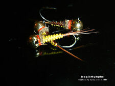 6 Stone Fly Woven JIG tungsten bead Trout Fishing Nymphs 12/14