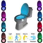 LED 8 Color Night Light Body Motion Sensor Automatic Toilet Seat Bowl Bathroom F