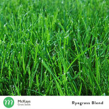 McKays Ryegrass Lawn Seed Blend 5kg - Fast Germinating - Lawn Seed Free Postage