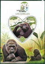 2017 Gorillas Animal Protection Mammals Apes