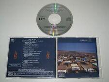 Pink Floyd/momentary lapse of reason (700021) Brazil CD