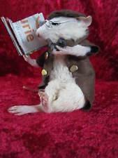 taxidermie rat lecteur  taxidermy rat  lecteur cabinet de curiosité oddities