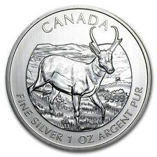 Canadian Wildlife Series Antelope 2013 1 oz .9999 Silver Coin
