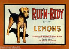 Upland Ruf'N-Redy Airedale Terrier Dog Lemon Citrus Fruit Crate Label Art Print