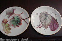 A.B. Daniell & Son, England, c1920s, WIGMORE ST, LONDON. 2 plates[*4-1]