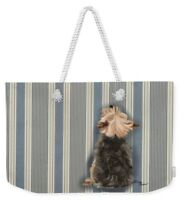 Weekend Tote - Yorkshire Terrier, Yorkie Looking Up FREE Personalization!