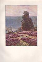 1901 Studio Aufdruck ~ Landschaft Von Didier-Pouget