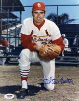 Steve Carlton Psa Dna Coa Autograph 8x10 Photo  Hand Signed Authentic