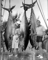 Cat Cay Tuna Tournament In Bahamas 1947 OLD FISHING PHOTO