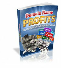 MAKE MONEY With Domain Name Profits! Fast, Fun And Easy, Buy Low Sell High (CD)