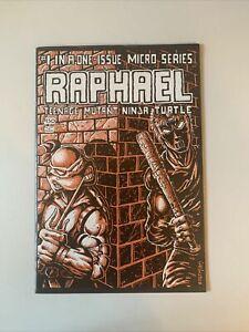 Raphael #1 - F/VF 1st Print First Casey Jones - Teenage Mutant Ninja TMNT