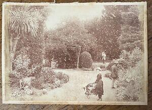 Antique Photo Botanic Gardens Ballarat by Fred Kruger c1880 Victoria Australia