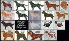 Retriever & Spaniel Counted Cross Stitch Patterns