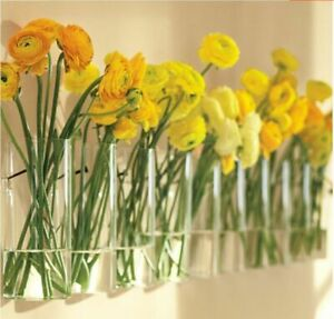 Cylinder Clear Glass Vase Wall Hanging Vases Flower Plant Container Home Decor