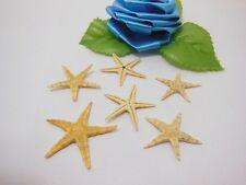 100X Starfish Table Centerpiece Wedding Beach Decoration 20-25mm