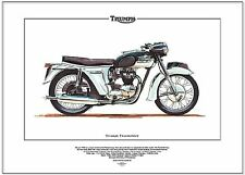 TRIUMPH THUNDERBIRD - Motorbike Art Print - 650cc 6T Classic 1960's Motorcycle