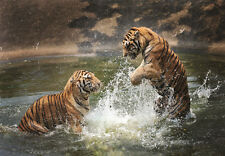 1000Piece Jigsaw Puzzle Tiger playing with water Hobby Home Decoration DIY