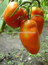 "Ungarische Samen Tomate ""Jersey Devil"" Sossentomate,organische Sorte"
