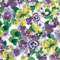 4 x Single Paper Table Napkin/Decoupage/Summer/Spring/Flowers/Pansy/Purple