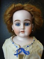 Large Antique Bisque Heubach Shoulder Head Lady Doll Gorgeous Blue Eyes Eyebrows