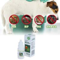 8ml Pets Dog Cat Anti-flea Drops Insecticide Flea Lice Insect Killer Spray AUIT