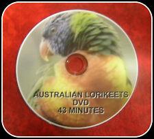 AUSTRALIAN LORIKEETS DVD  FREEPOST AUSTRALIA