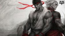 Streetfighter v brotherhood Ken Ryu Silk Poster/Wallpaper 24 X 13 inches