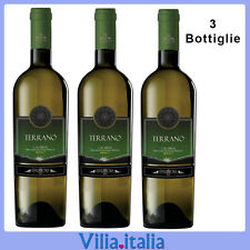 3 bottiglie Vino Bianco Spadafora Terrano Cl 75 formato risparmio