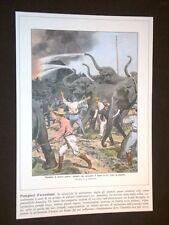 Anno 1906 Elefanti Treno in fiamme Usa Ristampa Copertine Domenica Corriere