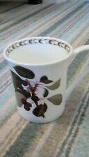 Queens Fine Bone China Hookers Fruit (Cherries) Mug