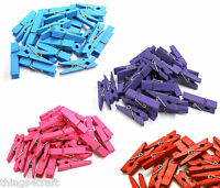Mini wooden pegs 3.5cm  Purple Pink Blue Red Peg UK