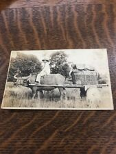 Water Buffalo Delivery Cart Philippines 🇵🇭 RPPC Photo Postcard