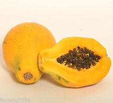 100 Fresh Seeds Golden Yellow HAWAIIAN PAPAYA Hawaii Tropical Fruit