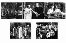 BRIDE OF FRANKENSTEIN - SET OF 5 - A4 PHOTO PRINTS # 1