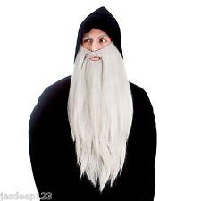 Wizard Long Merlin Gandalf Fancy Dress Beards Halloween Fancy Dress Accessory